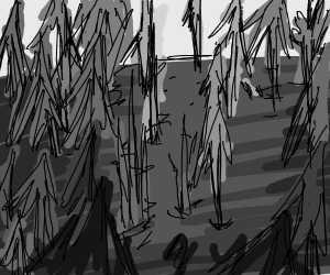 dreary forest
