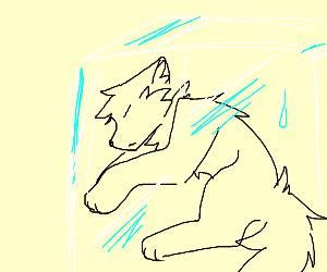 Frozen Wolf