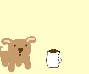 Pet Coffee