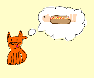 cat thinks about human hot dog