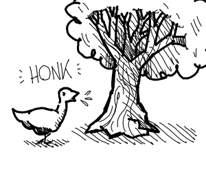Honk at a tree