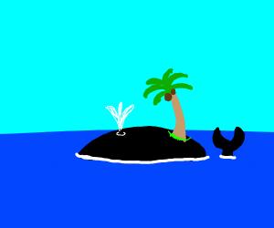 A whale island