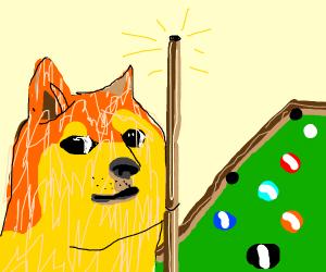 doge billiard