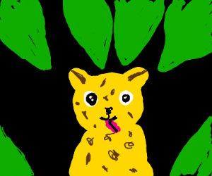 Stoned leopard in the very green forest