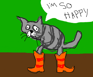 Cat wearing orange boots and is happy