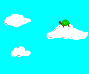 Turtle in the clouds