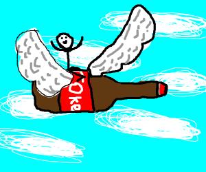 Fly on coke