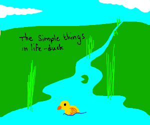 Duck enjoys the simple life