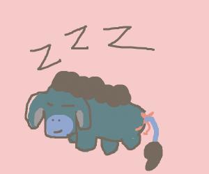 eeyore sleeping