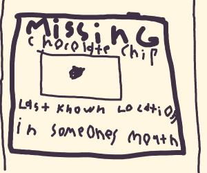 Attention seeking chocolate chip