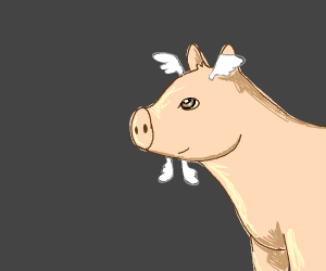Pig with wings on its head and chin