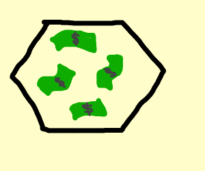 Dollars in a hexagon