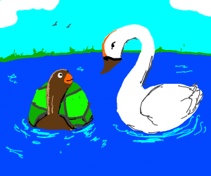 On the vast lake, a turtle encounters a swan.