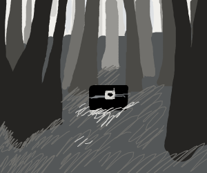 a box in a mysterious, dark forest