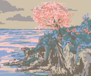 cherry blossom tree at an ocean cliff