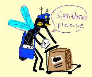Mosquito Mailman