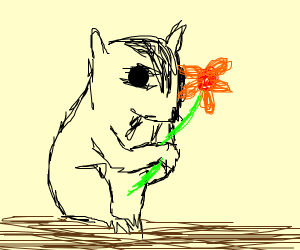 Squirrel carrying a Flower