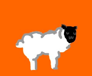cute uwu sheep