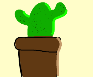 A cactus..that is a prick!