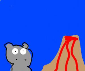 Hippo near a volcanoe