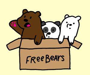 Adopt We bare bears