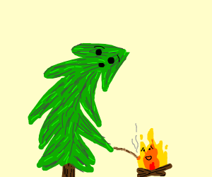 Tree feeds fire