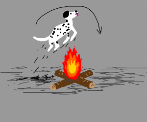 Dog jumping over a fire