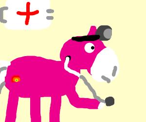 Pony Doctor