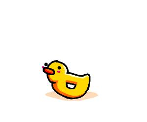 A cute little duck