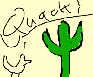 Duck screaming at a cactus