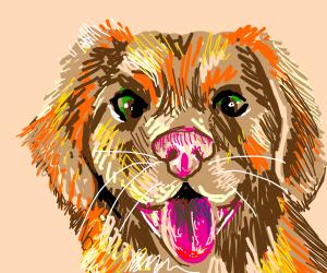 uhhh draw a dog lol