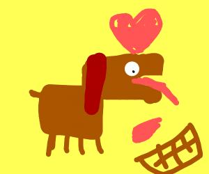 Dog loves chocolate and ketchup