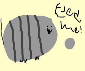 pusheen implores you to feed her