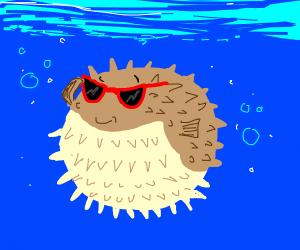 Cool Pufferfish