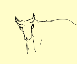 a bull thingy