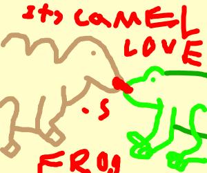 Camel loves Frog