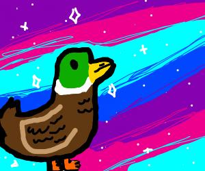 AstroDuck
