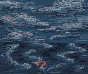A pair of swim trunks