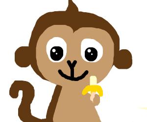 Monkey eats a banana