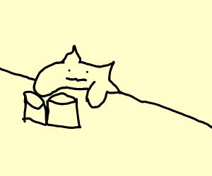 meme cat pissed