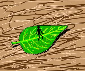Tiny man walking on leaf