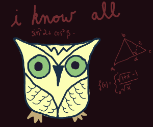 Owl is all-knowing when it comes to math