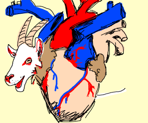 a goat in a heart