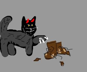 devils cat destroying boots