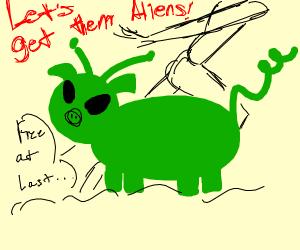 Alien pig in area 51
