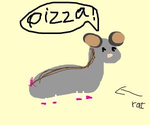 Rat says pizza