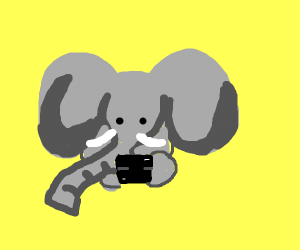 Elephant playing a game