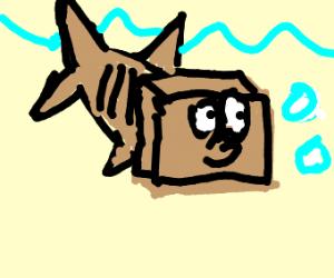 a boxfish (a fish, but... boxy)