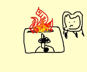 Toaster Oven on fire