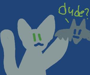"Cat poking a bat saying ""dude ?"""